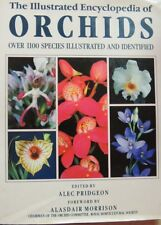The Illustraded Encyclopedia of Orchids über 1100 Arten.. 1992 in Englisch