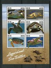Nevis 2015 MNH Loggerhead Sea Turtles 6v M/S Reptiles Fauna