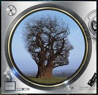 "Pink Floyd Tree Photo Storm Slipmat Turntable 12"" Record Player, DJ Audiophile"