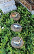 Miniature Dollhouse FAIRY GARDEN - Bird Stepping Stones Set of 3 - Accessories