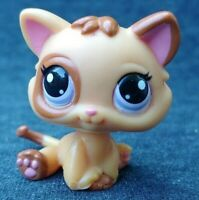 Littlest Pet Shop Brown & Orange KITTEN #1818 Green Eyes White Ear Cat Tan RARE