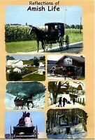 Reflections of Amish Life (2015, DVD New)