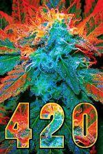 WEED 4:20 POSTER - 24x36 POT MARIJUANA SMOKING 3206