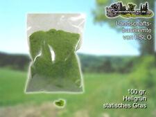 statisches Grasstreu - hellgrünes Grasstreu 100gr. (4,49 € / 100 gr.)
