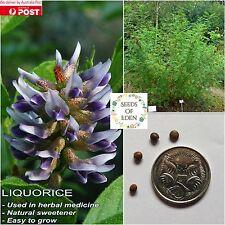 10 LIQUORICE SEEDS (Glycyrrhiza glabra); Medicinal Herb