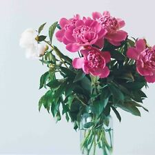 Blumen, Blüten & Girlanden für Hochzeiten