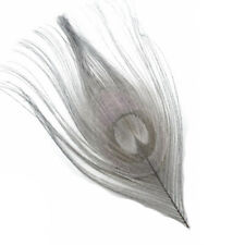 Gray Dyed Peacock Feather Tips - 10 Pieces