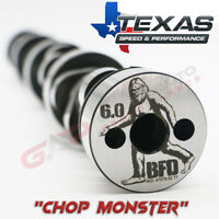 """Texas Speed (TSP) B.F.D. """"Chop Monster"""" 6.0L Cathedral Port LS2 Cam"""