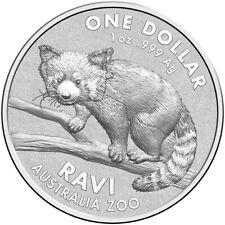Australien 1 Dollar 2018 Ravi / Roter Panda Australia Zoo (2.) - 1 Oz Silber ST