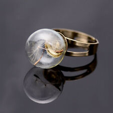 Natural Dandelion Seed in Glass Ball Vial Globe Wish Ring Terrarium Round Shape