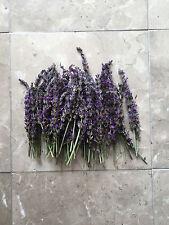 Organic Natural Air Dried California Lavender Flower Bunches