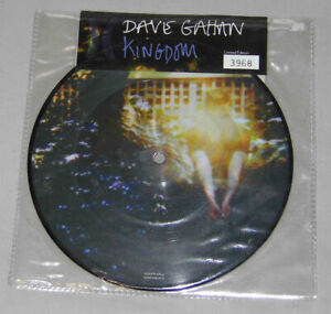 """Dave Gahan Kingdom 7"""" Vinyl Record Single Picture Disc Sealed Numbered Rare"""