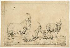 Rare Antique Master Print-ANIMAL-HISTORY-LITHOGRAPH-Verboeckhoven-Kierdorff-1820
