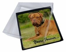 """4x Dogue De Bordeaux """"Yours Forever..."""" Picture Table Coasters Set in , AD-DB2yC"""