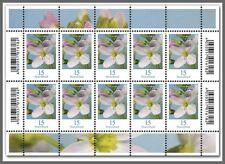 Z07 Deutschland BRD 2018 Mi 3424 Flowers Blumen Wiesenschaumkraut Postfrisch KB