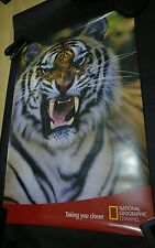 National Geographic Channel Tiger promo poster 84cm x 60cm