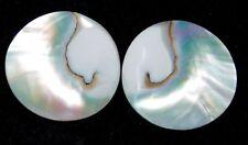 Loose Gemstone 17cts. Natural Nautilus Shell Cabochon  Lot 6430