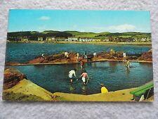 The Yachting Pond, Millport, Cumbrae, Scotland Postcard