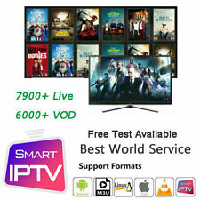 IP TV 14 Months Subscription Smart TV Android Box Smarters Pro STB MAG M3U Adult