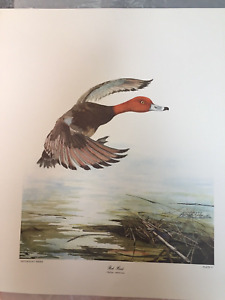Sallie Ellington Middleton Redhead Print-Signed and Numbered