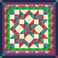 Quilt Kit/Carpenter Wheel/Batik/Pre-cut Fabrics Ready2Sew/QN/Expedited Shipng***