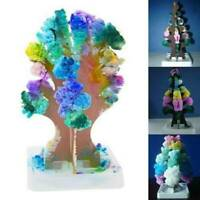 Kids Magic Growing Crystal Tree Kit Decoration Science Toy Gift experiment Hot