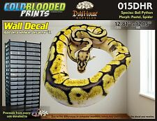 Removeable Wall Decal Snake Ball Python Cold Blooded Prints Sticker 015DHR