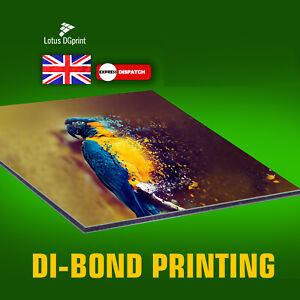 A Digitally Printed 3mm Composite Aluminium Dibond, Shop Signs FREE LAMINATED