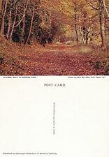 1970's MARGAM PARK PORTH TALBOT GLAMORGAN WALES UNUSED COLOUR POSTCARD