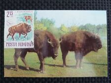 ROMANIA MK BISON WISENT MAXIMUMKARTE CARTE MAXIMUM CARD MC CM c1019