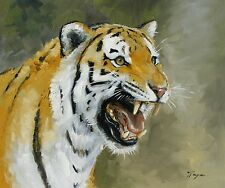 Original Oil painting - wildlife art - big cat portrait of a tiger - by j payne