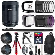 Canon 55-250mm IS STM - Video Kit + LED KIt + Monopad - 64GB Accessory Bundle