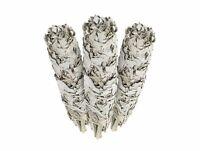 Premium California White Sage 4 Inch Smudge Sticks - 3 Pack