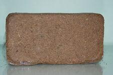 Vivarium Terrain Substrat Noix de Coco Fibre en 2 X 400g Blocs à Transparent