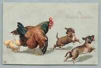 Rooster Chasing Dogs—Antique Embossed EASTER Postcard Puppies 1910s