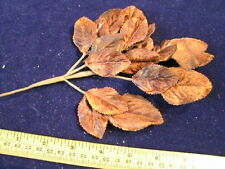 Millinery Flower Velvet Leaf 18pc Lot Brown Shades K16