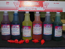 Snow Cone Syrup 6 Quarts w/ 6 Spouts Pick your Flavors With 200 Cups