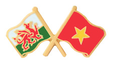 Vietnam Flag & Wales Flag Friendship Courtesy Pin Badge