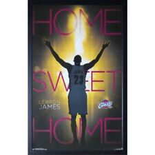LeBron James Basketball Memorabilia