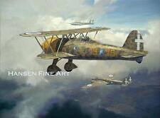 Fiat CR.42 Italian Plane Limited Edition Aviation Painting Art Print Darryl Legg