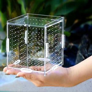 Aquarium Breeding Box Acrylic Fish Tank Isolation Box Tank Breeding Boxes New