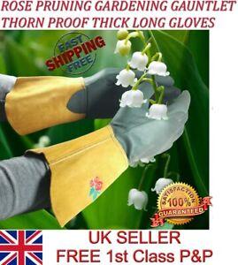 LTG Ladies Gardening Leather Long Gloves Thorn Resistance Garden Work Safety DIY
