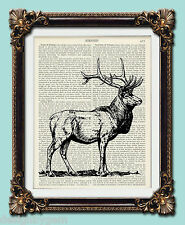 "Stag Antique vintage encyclopaedia dictionary art print 10"" x 8"""