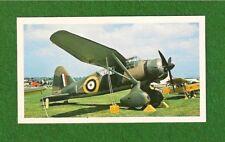 WESTLAND LYSANDER RAF  Army Cooperation Aircraft original photocard