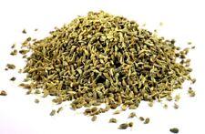 100 graines Aromatiques - ANIS Vert - Pimpinella anisum