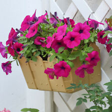 Hanging Planter Plant Pot Wall Mounted Garden Fence Balcony Flower Basket Pot