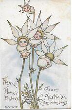 ORIGINAL MAY GIBBS FLANNEL FLOWER BABIES GROW IN AUSTRALIA CARD  POSTCARD