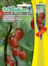 Baumtomate - Tamarillo,Saatgut,Cyphomandra betacea,Gemüse,Chrestensen,SL