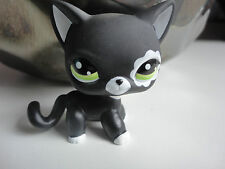 Littlest Pet Shop Collection LPS Figure Toy Short Hair Cat Blythe Black # 2249