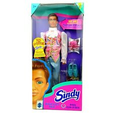 1995 Hasbro Sindy Magic Eyes Paul Doll